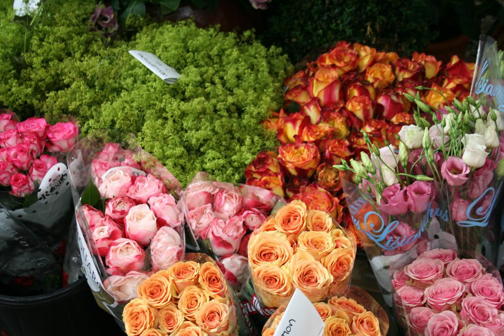 amsterdam-bloemenmarkt-01