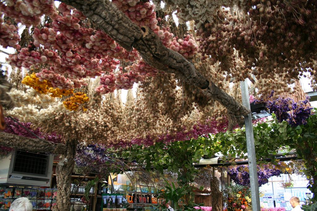 amsterdam-bloemenmarkt-02