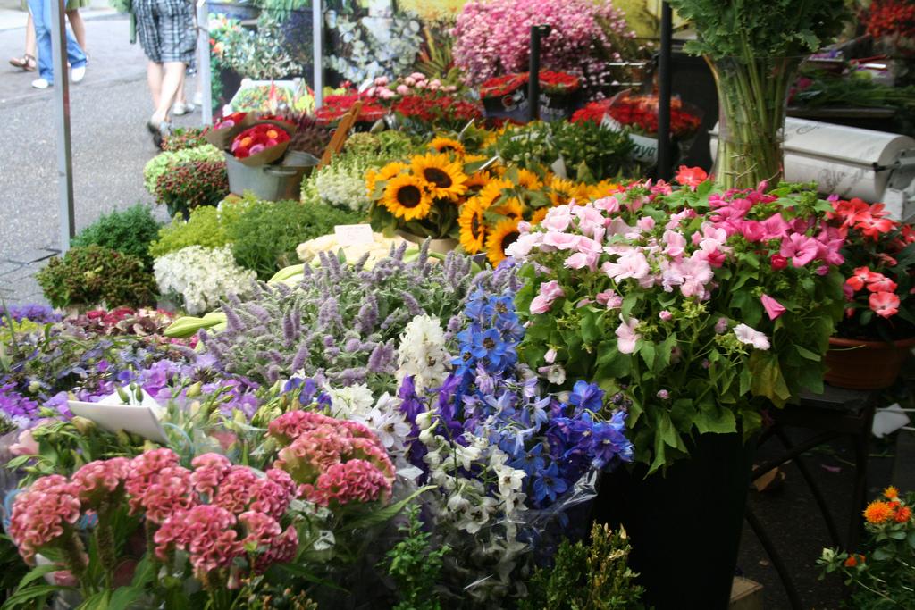 amsterdam-bloemenmarkt-04