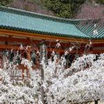 Heian-jingū