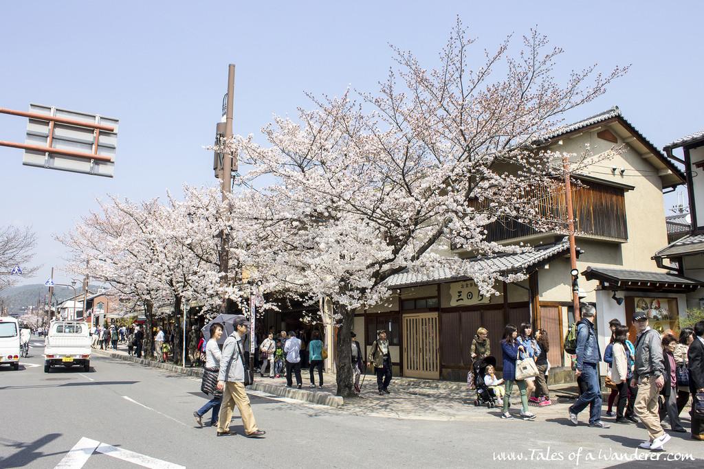 arashiyama-04