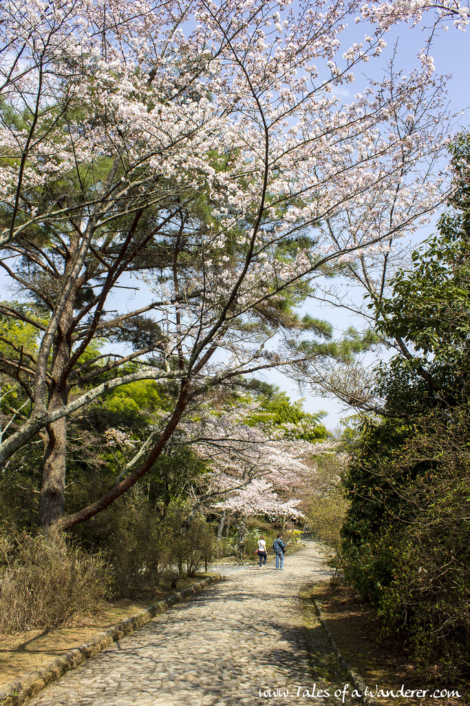 arashiyama-23