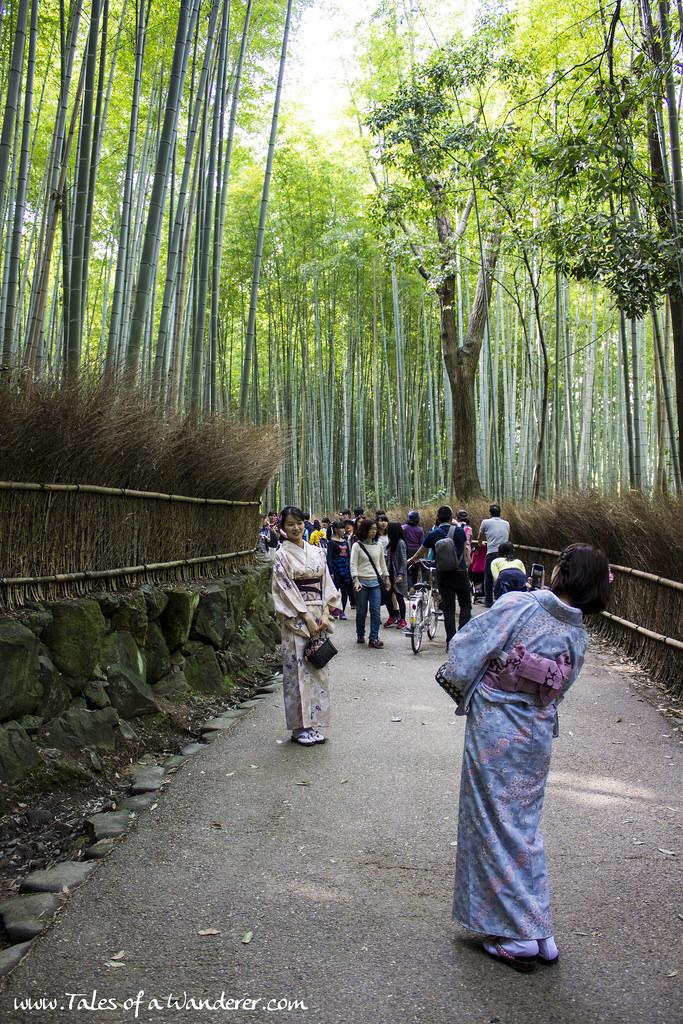 arashiyama-29