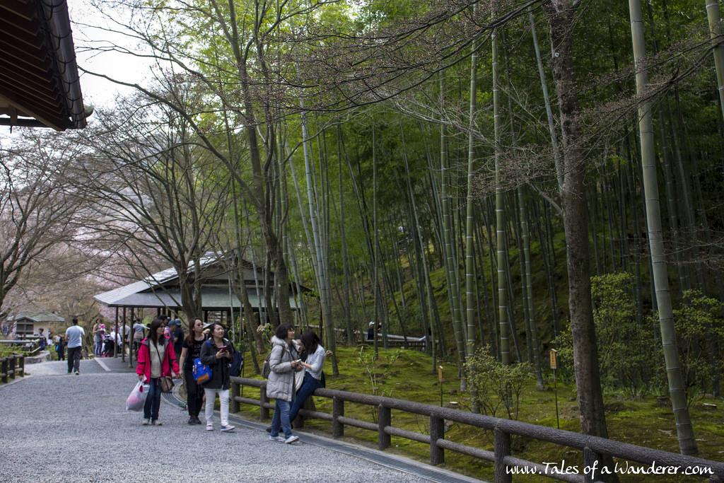 arashiyama-30