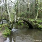 Ponte Vella de Xuño