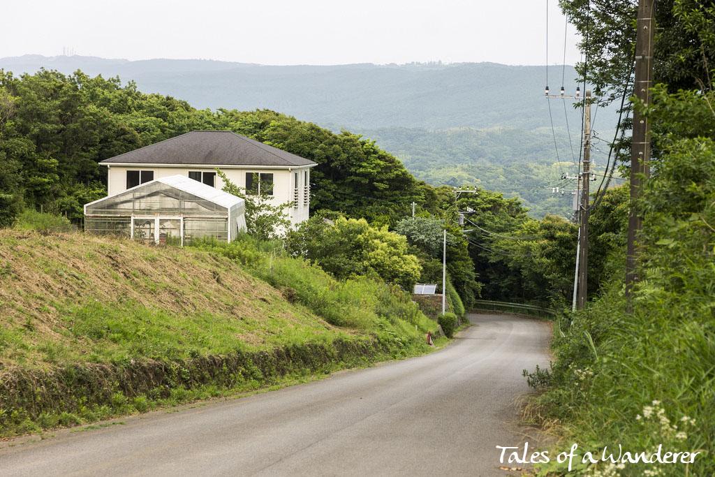 tokyo-wan-kannon-11